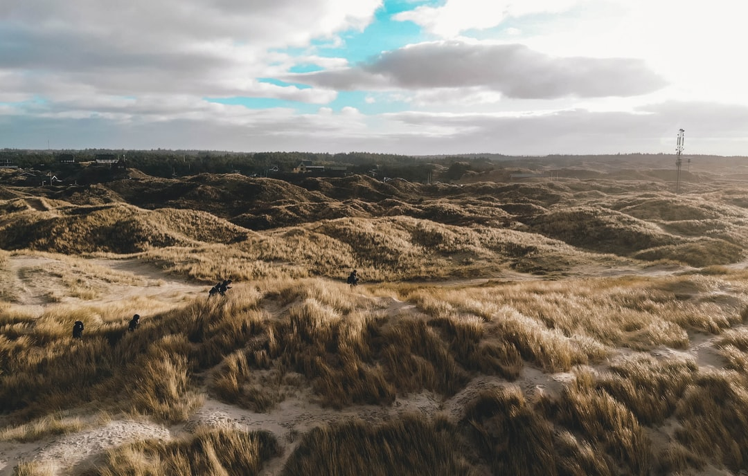 Wandering through some dunes at the beach of Henne Strand.