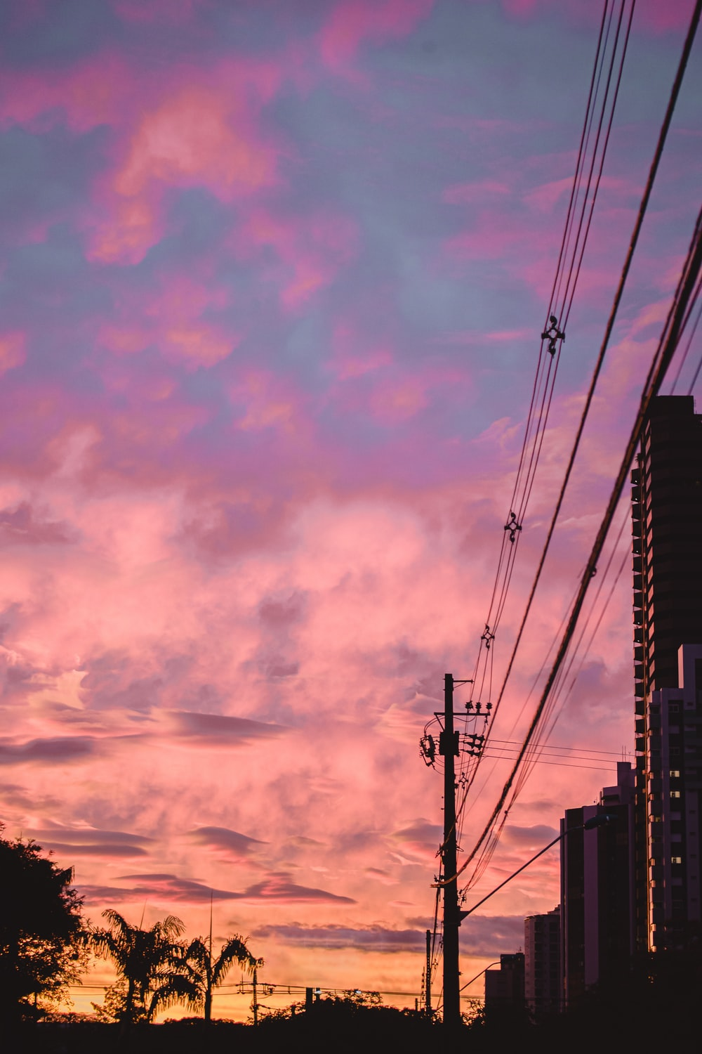 silhouette photography of electric post and buildings during dawn