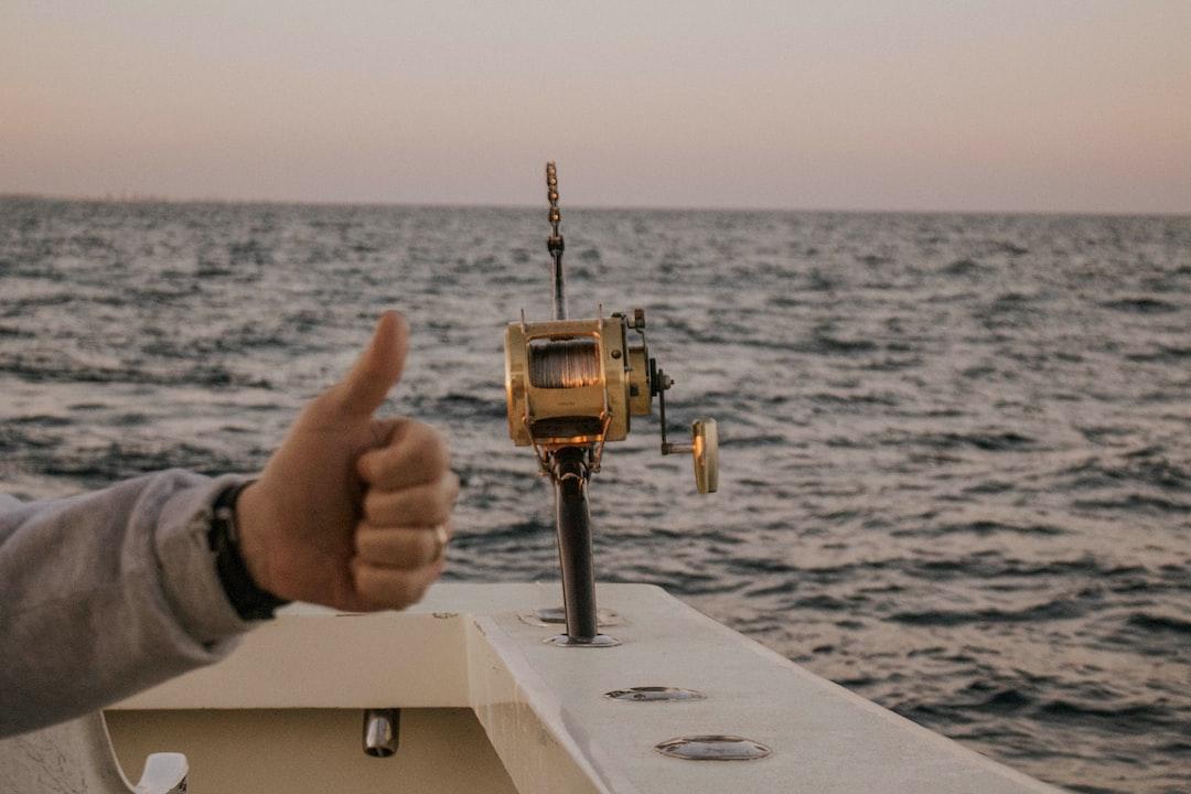 Brown Fishing Rod - unsplash
