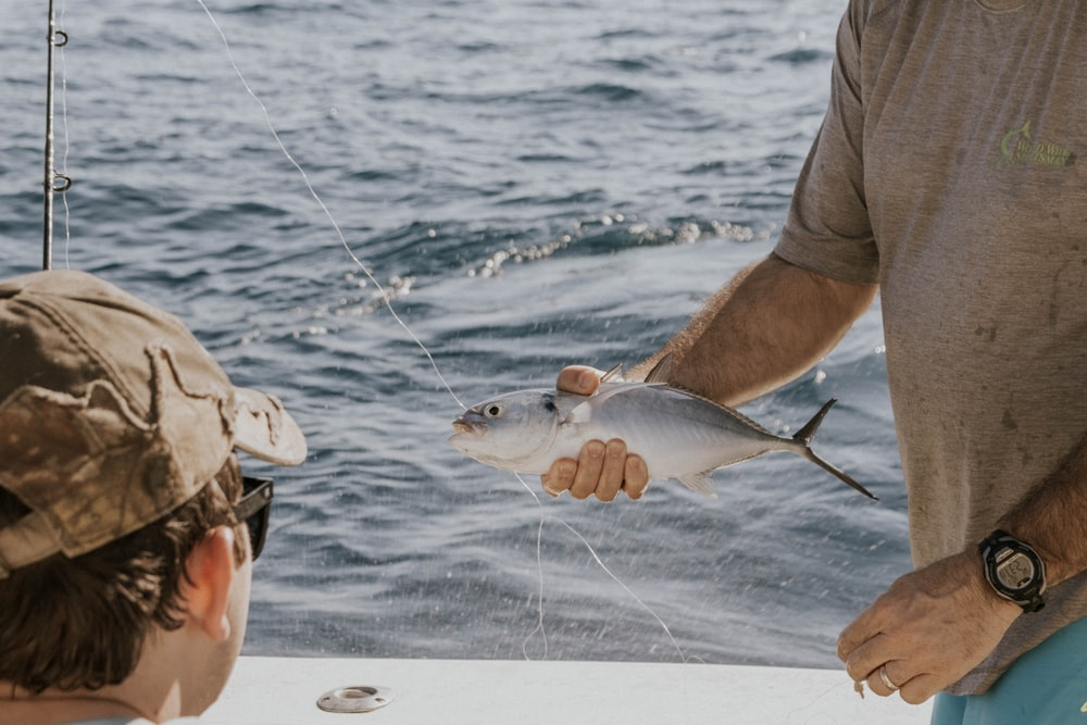 person holding gray and black fish