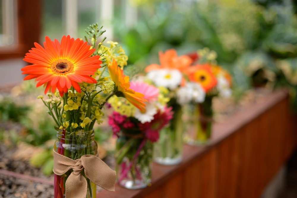 selective focus photography of vases of flowers