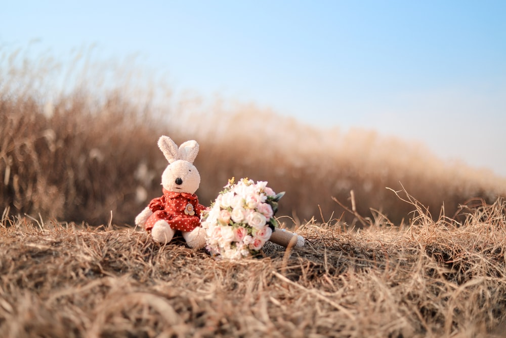 bunny plush toy beside flowers