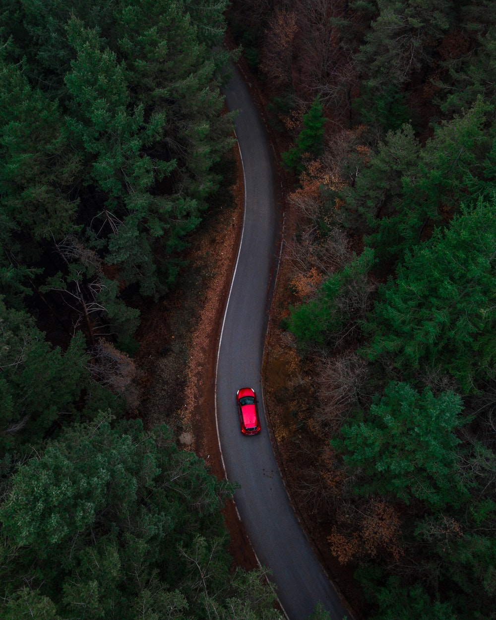 aerial photo of red car passing by green trees