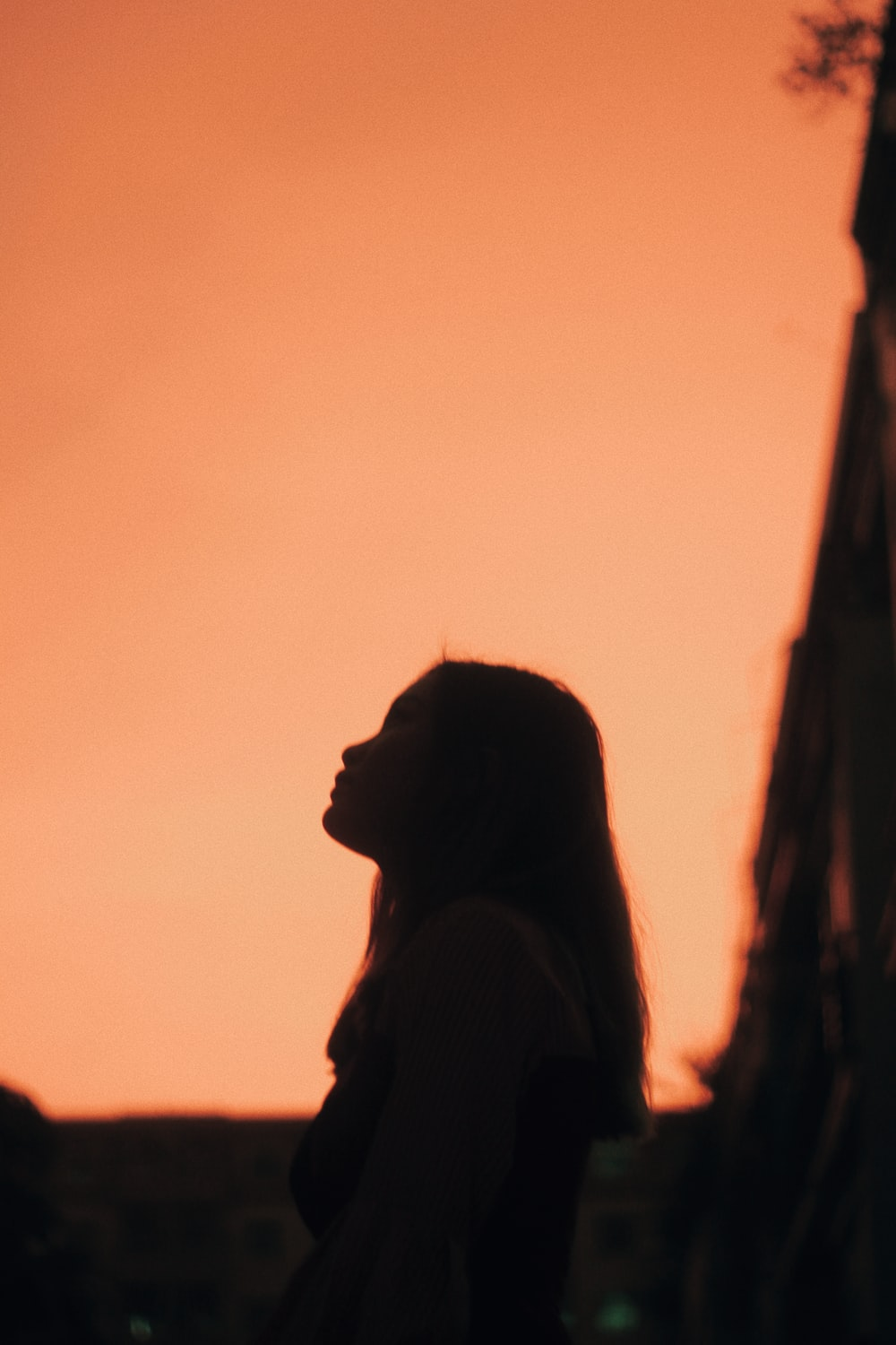 silhouette of woman with head up during golden hour