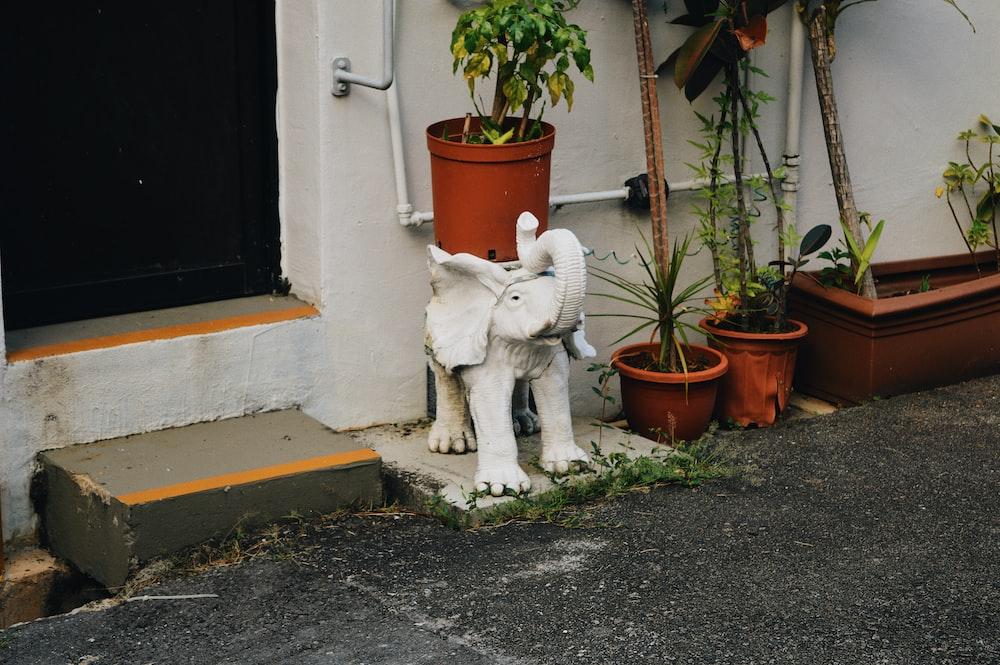 white elephant statuette near plant pot