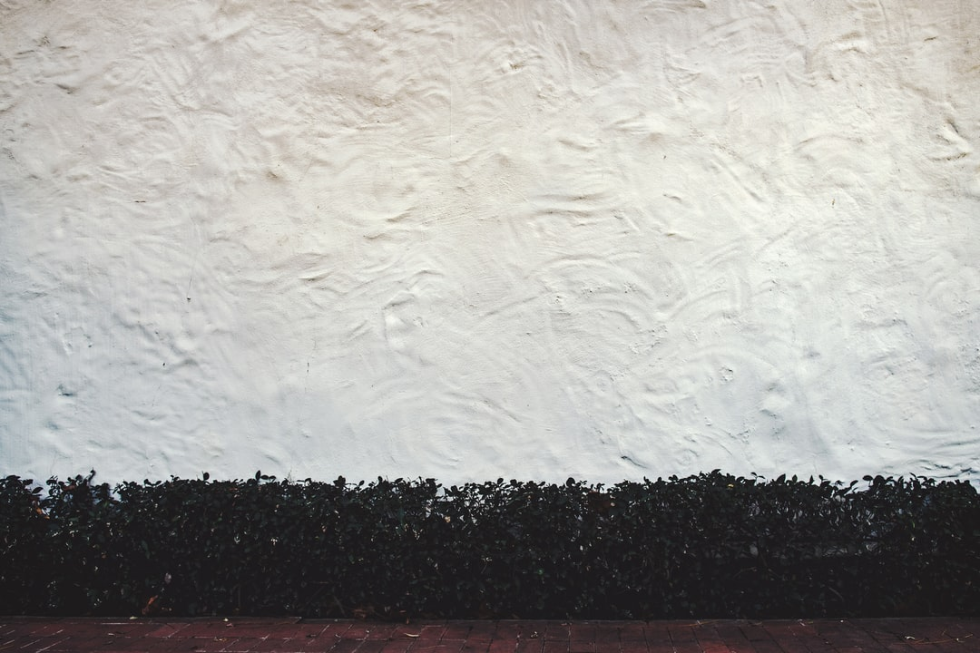 Textured Wall - unsplash