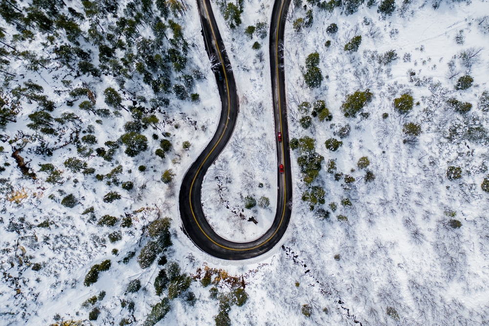 cars on road with trees and snowfield during day
