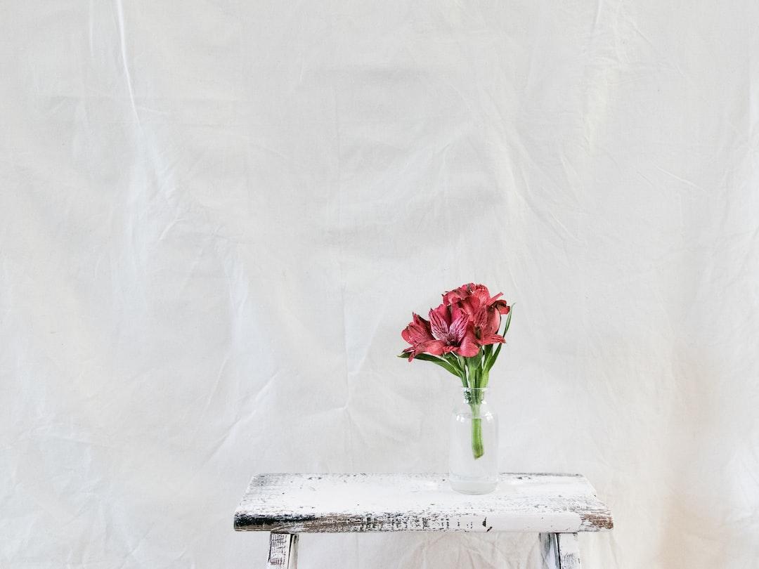 Fresh Flowers - unsplash