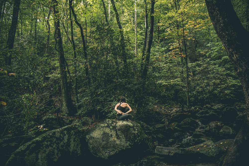 person in forest during daytime