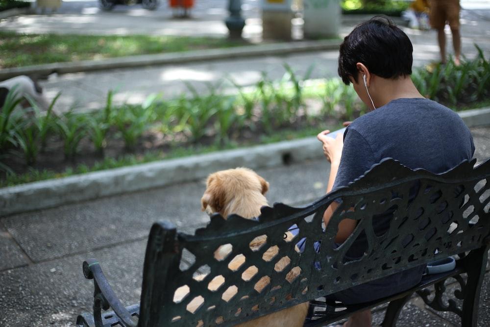 man using smartphone sitting on park bench beside dog