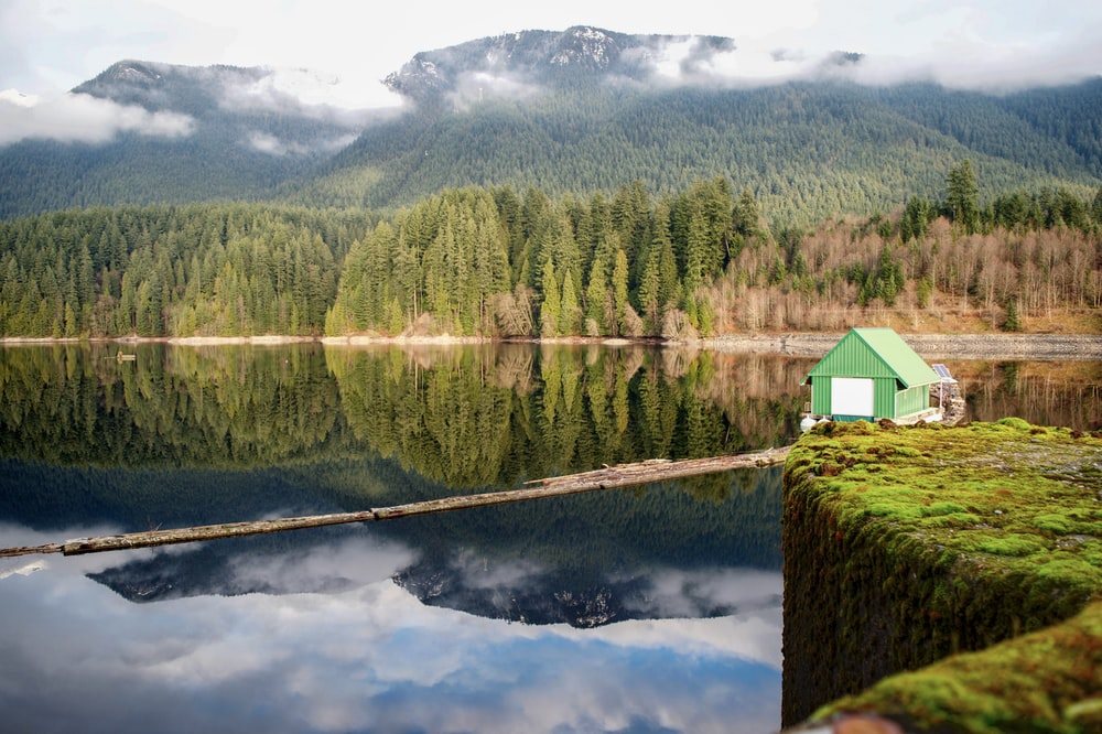 green house beside body of water