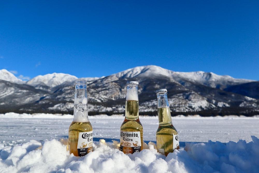 Corona Extra bottles