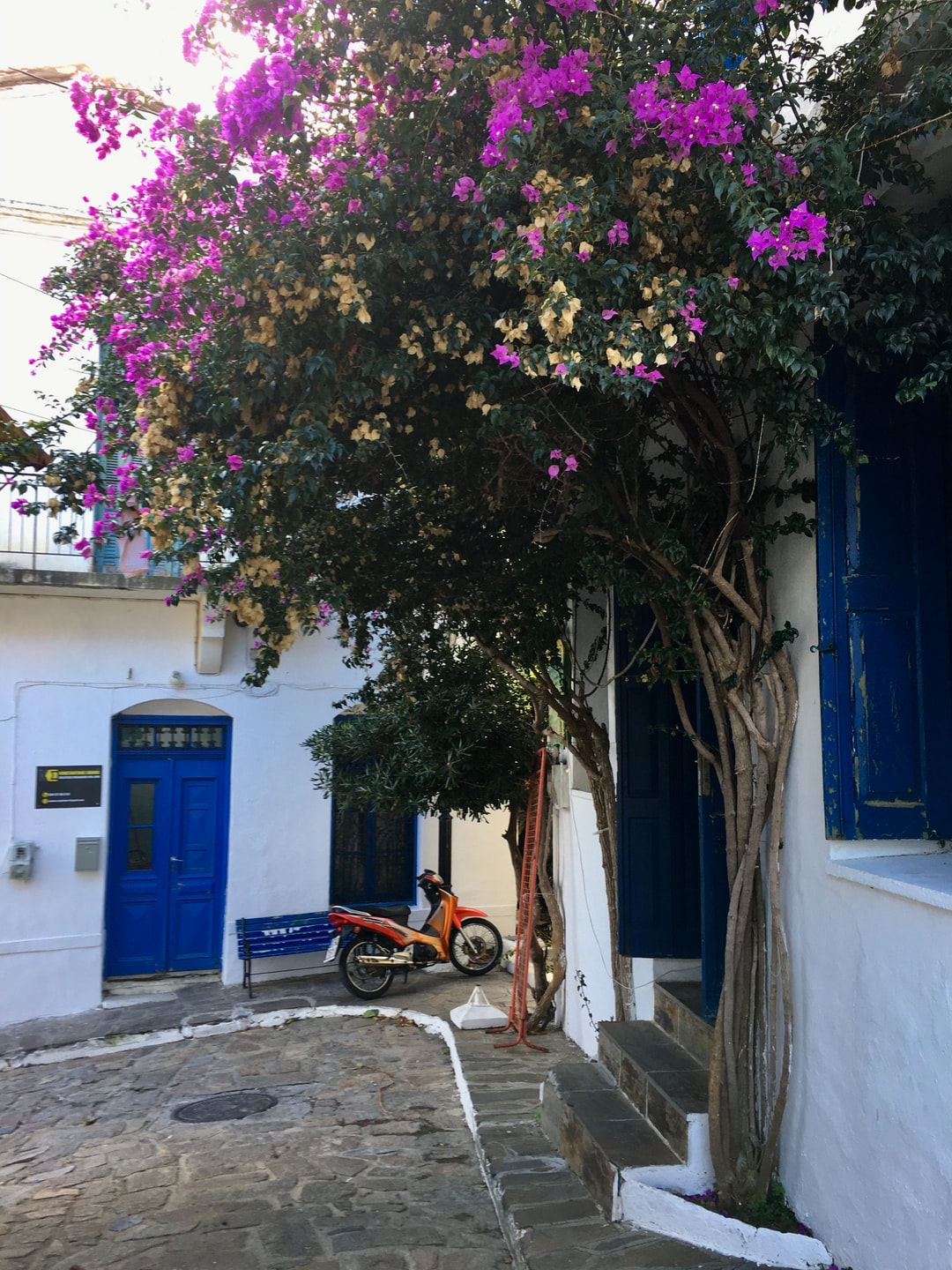 Ikaria, the island that extends life
