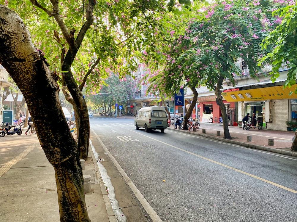gray van on road between trees