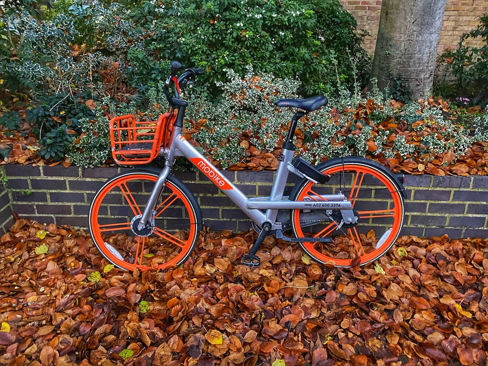 gray and orange fixed-gear bike