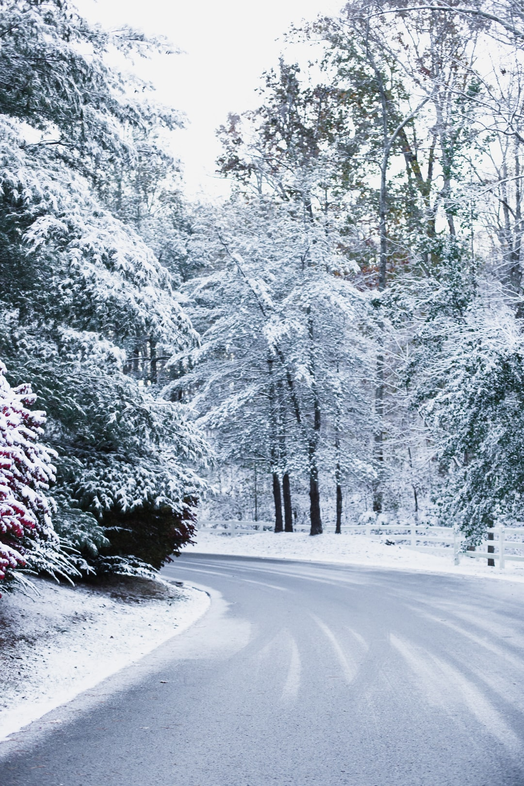 Winter wonderland in Kentucky.