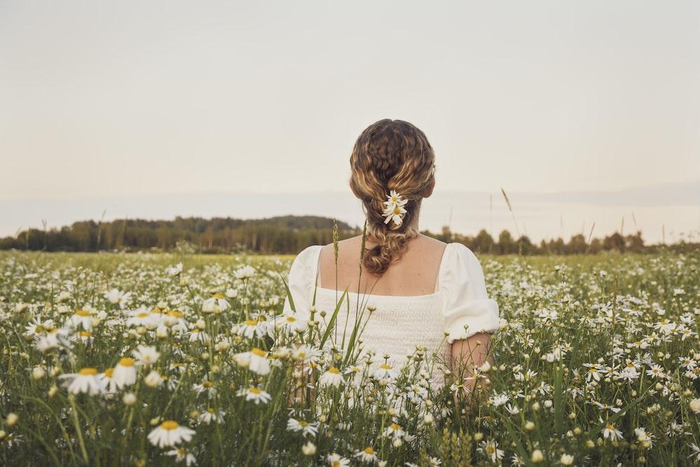 woman walking along a white aster flower field