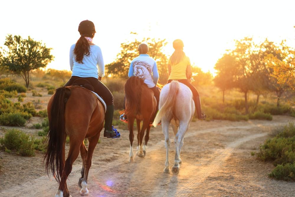 three persons riding horses