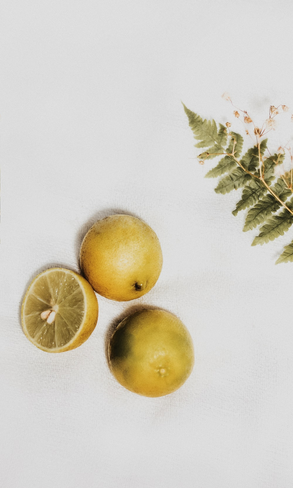 two round fruits