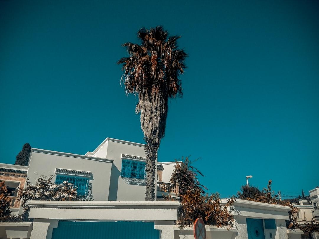 Architecture Sidi Bou Said Tunisia