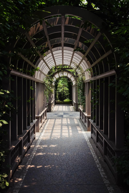 light through arch hallway under plants