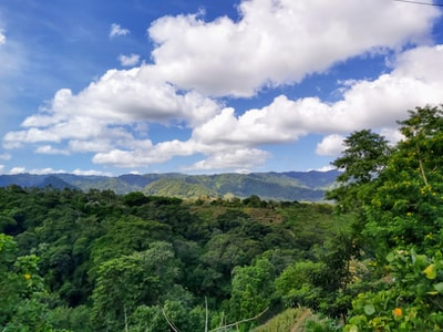 green leafed trees under cloudy sky nicaragua teams background