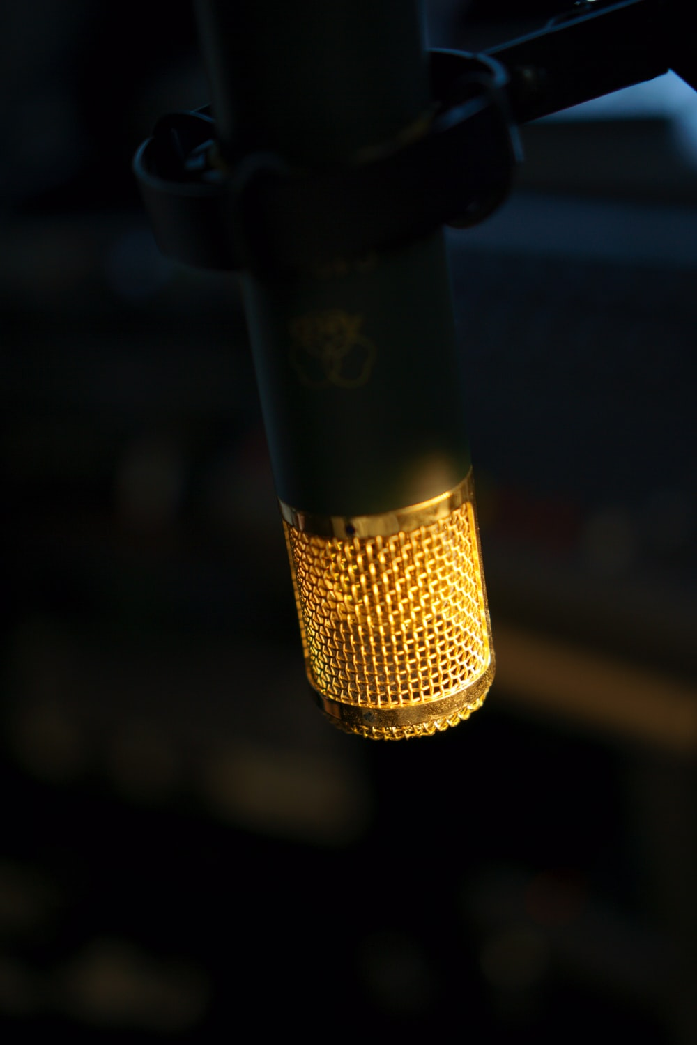 selective focus photography black and brown microphone