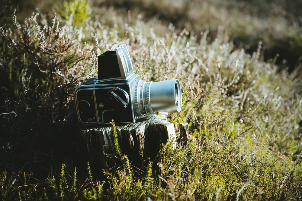 gray and black camera on wood on grass field