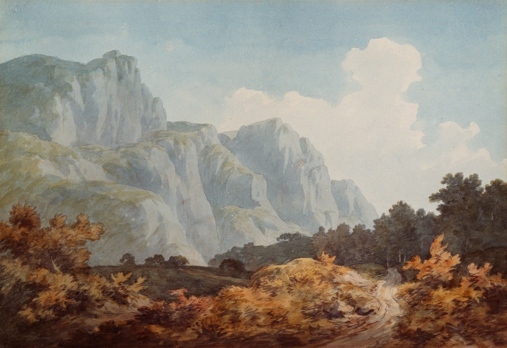 brown and grey trees and rock formation painting