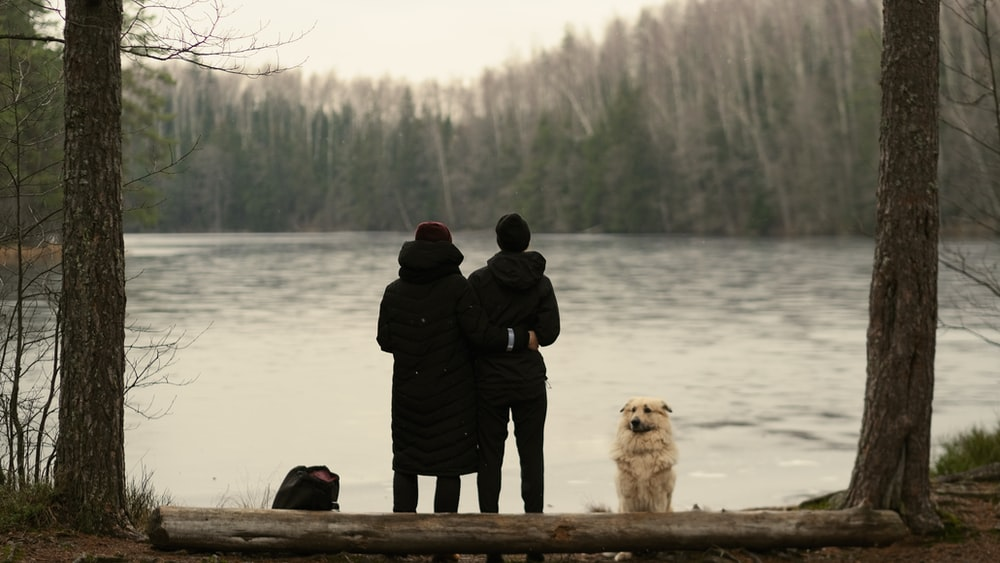 two people standing and facing the lake near dog sitting and facing them near trees during day
