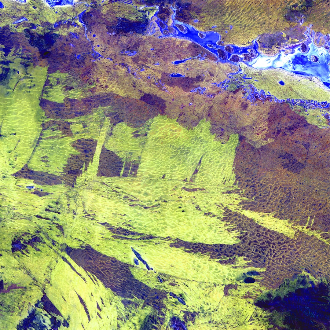 Like frantic brushstrokes, fire scars cover the arid landscape near Lake Amadeus (upper right) in Australia's Northern Territory. Lake Amadeus is rich in salts that have been leached out of underlying sediments. When dry, its lake bed is transformed into a glistening sheet of white salt crystals.