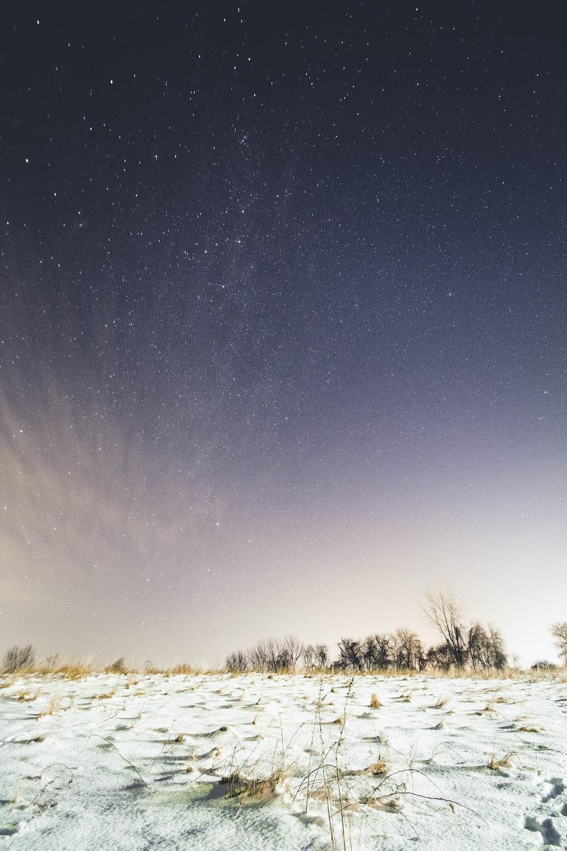 snow-covered ground under sky full of stars