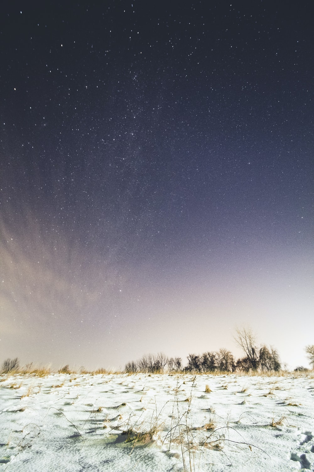 snow-covered ground under sky full of stars