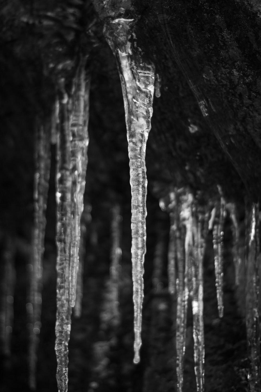 grayscale photography of ice glazer