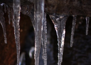 stalactites photograph