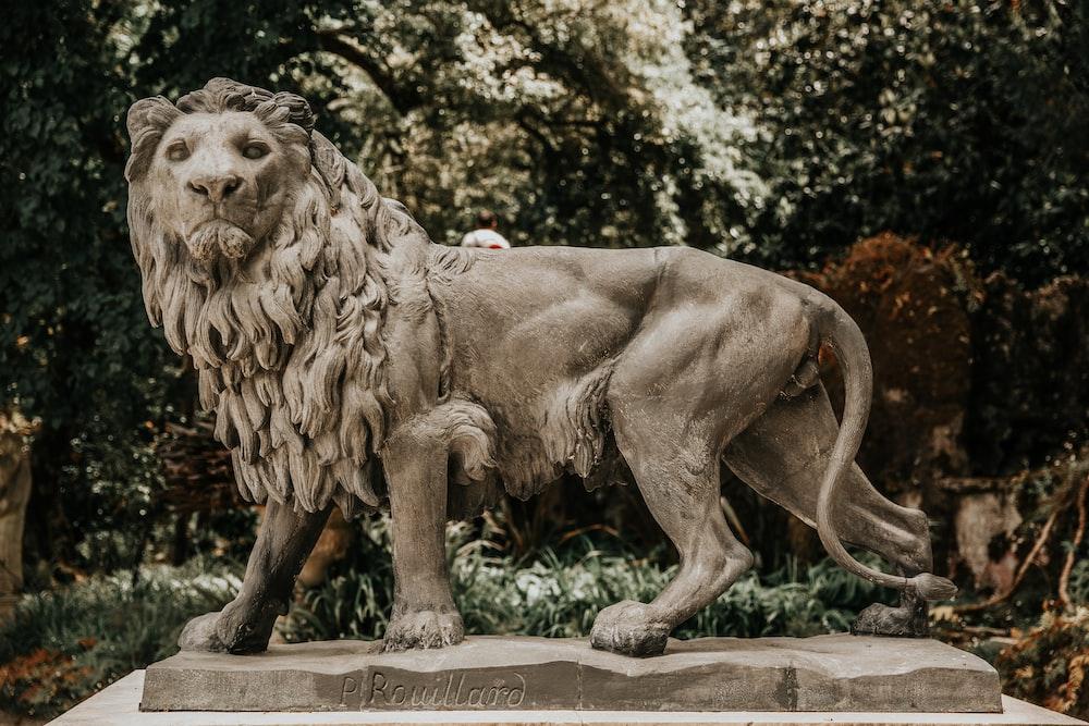 lion statue at the park
