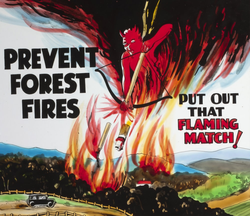 prevent forest fires text overlay