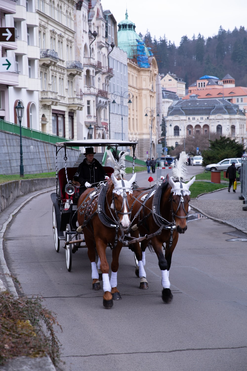 brown horse carriage during daytime