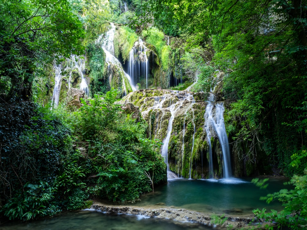 waterfalls in the middle of forest at daytime