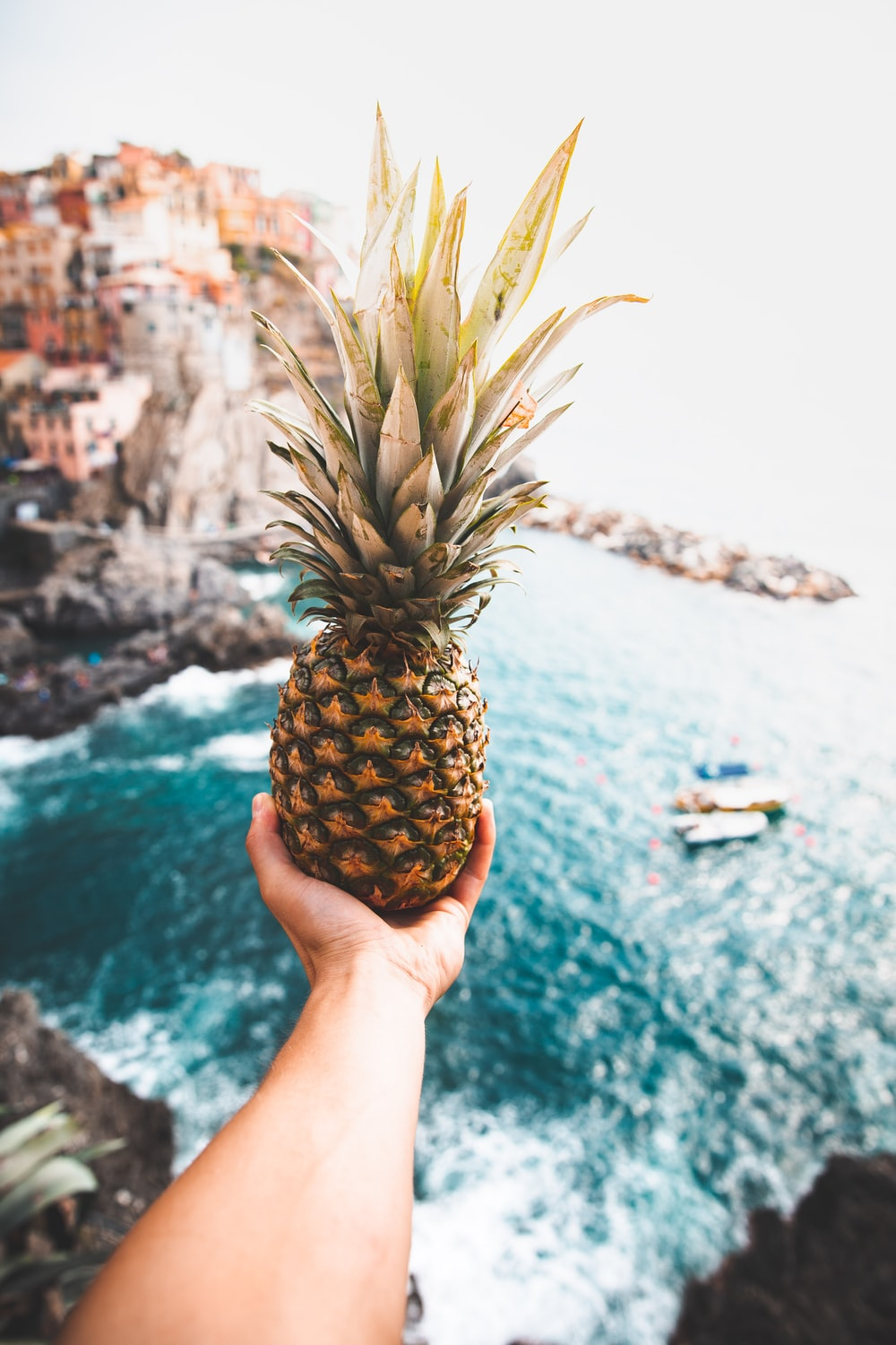 person holding pineapple at cliff