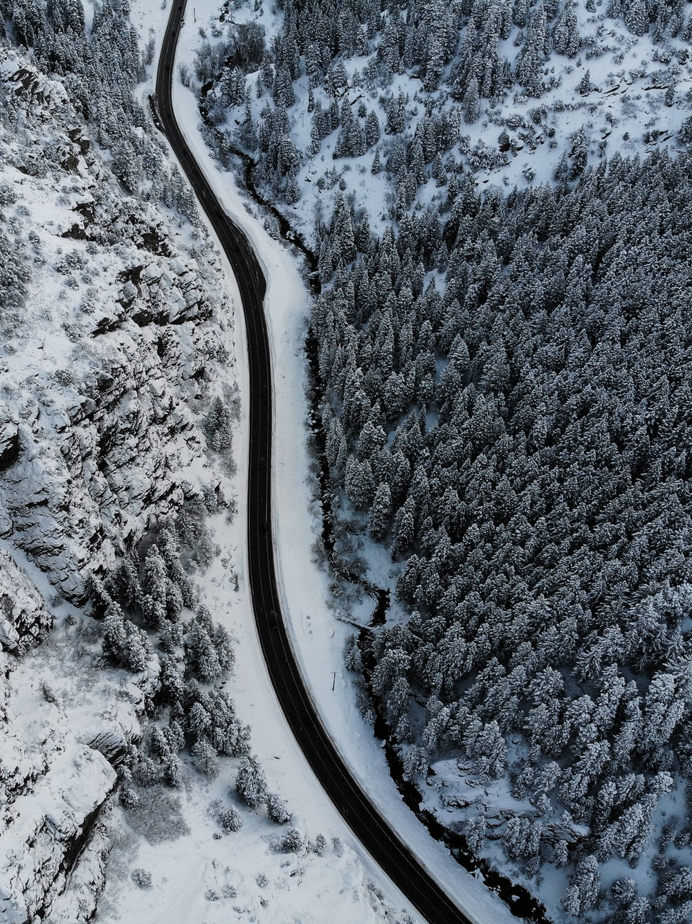 aerial photography of field and trees covered with snow