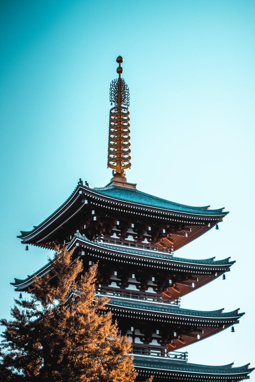 Sensoji temple near trees