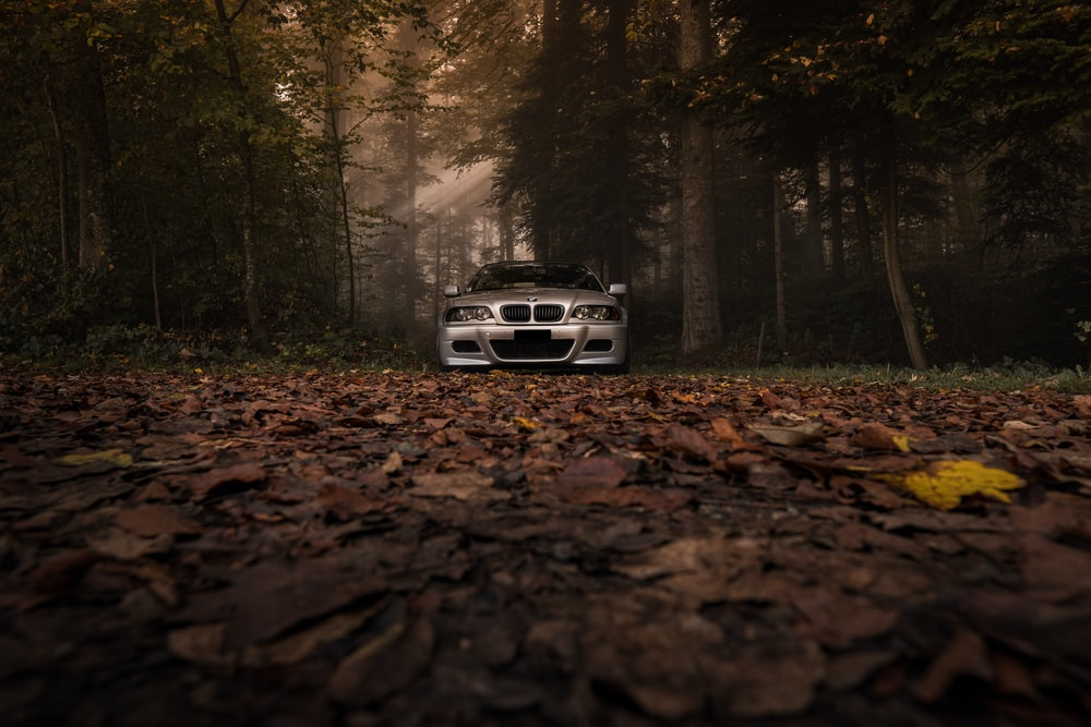silver BMW parked between trees