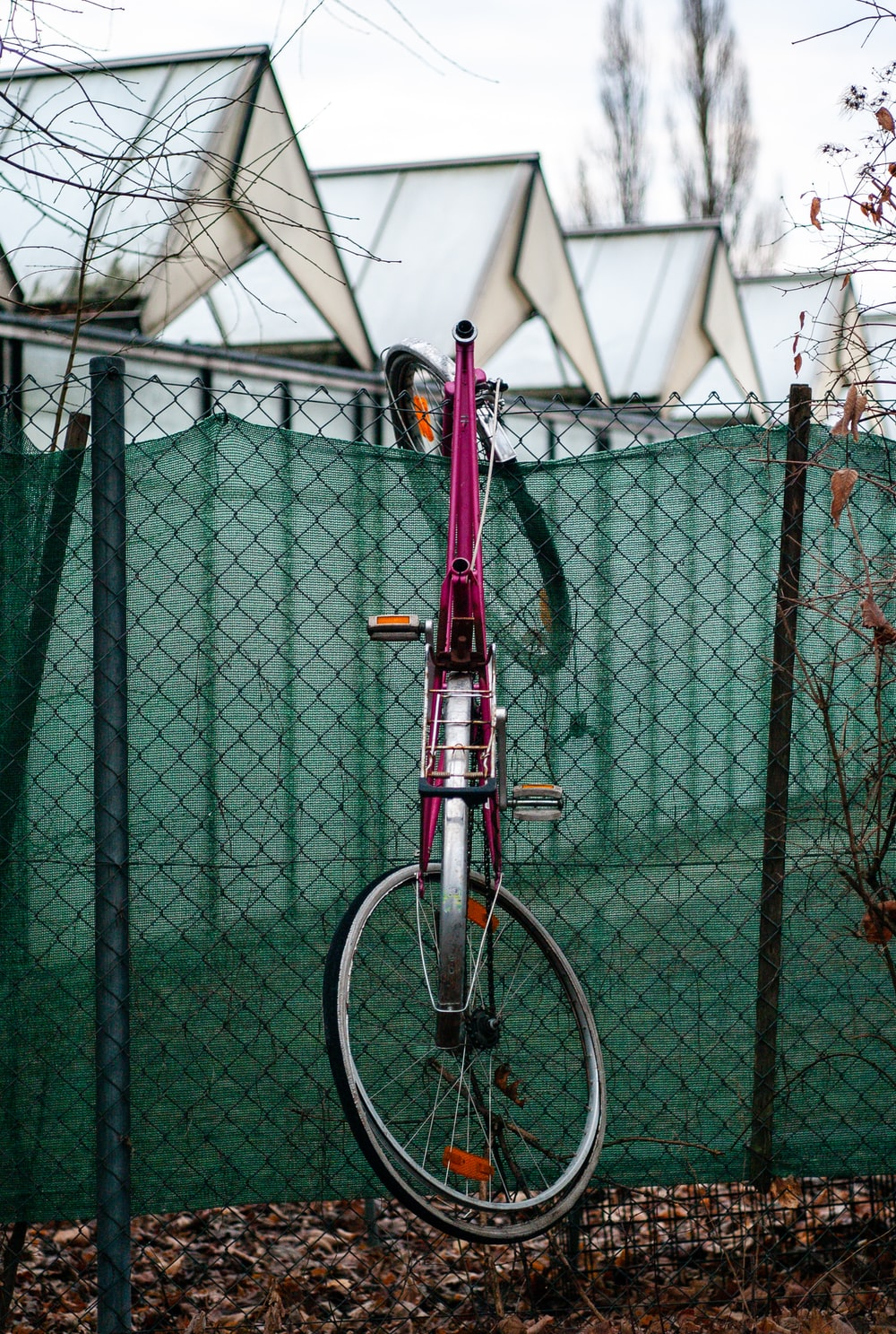 pink city bicycle hanging in fence