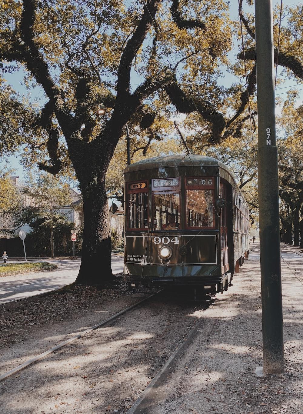 train crossing beside tree