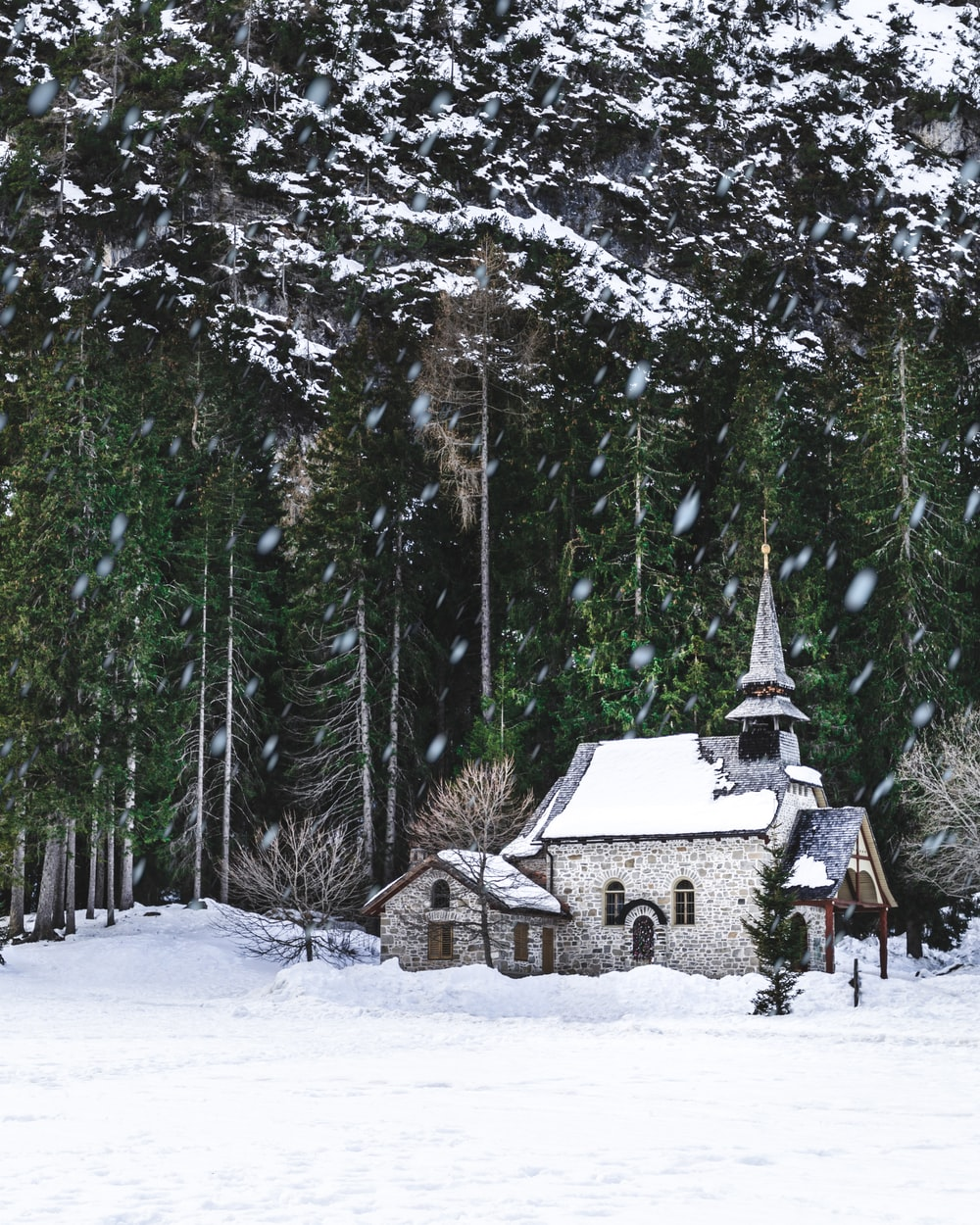 white and gray house covered with snow beside trees