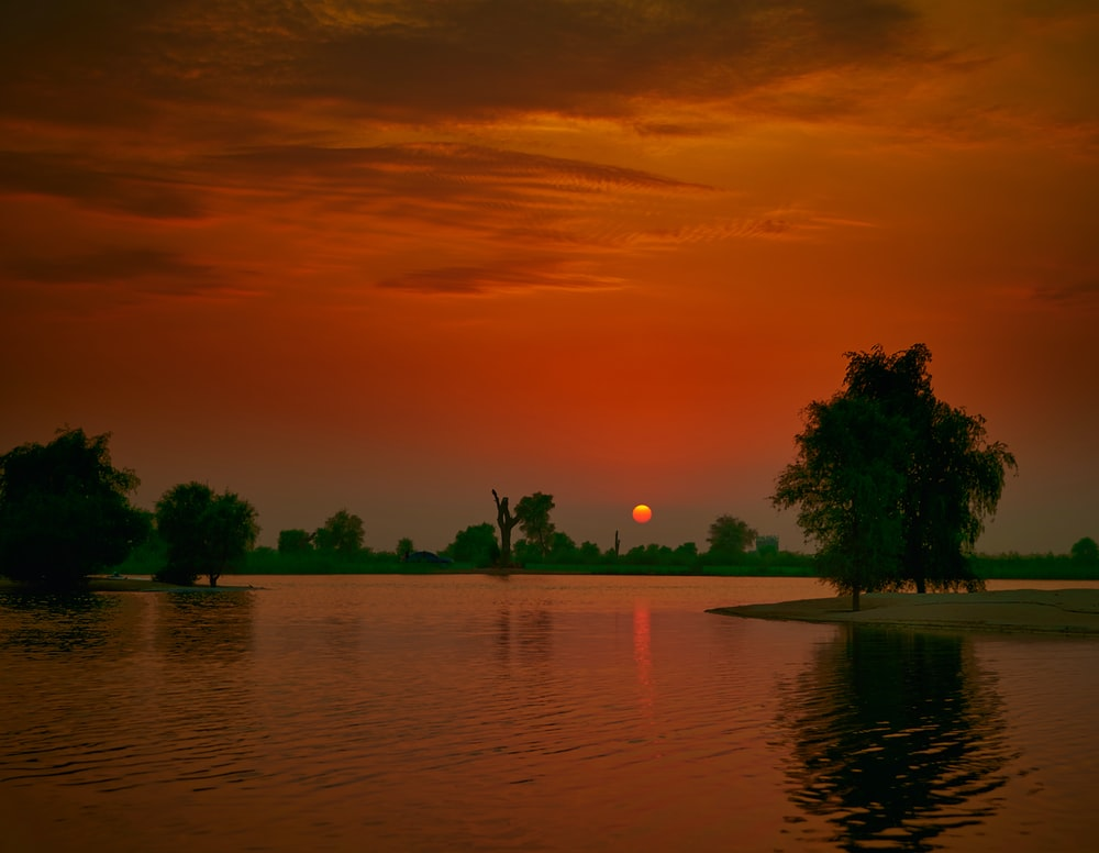 body of water surrounded with trees showing full moon view