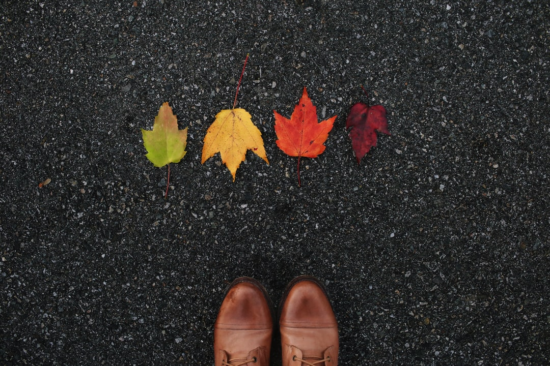 Fall Leaves and Boots - unsplash