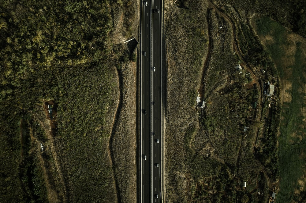 eagle eye photography of road surrounded by green field
