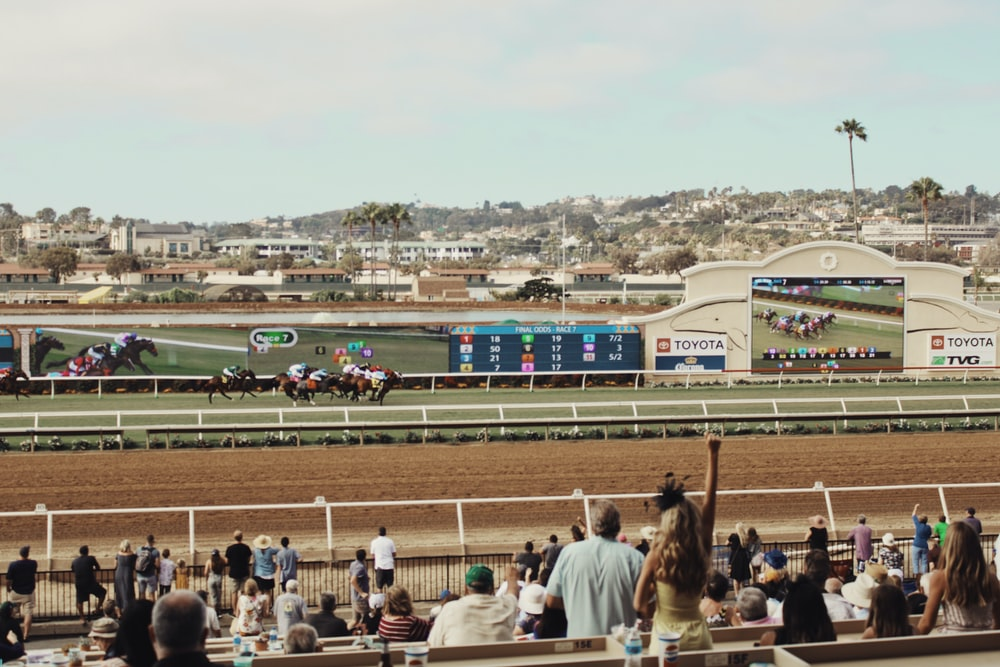 unknown persons watching horse racing